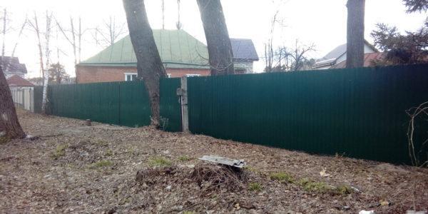 Забор с деревом - 2