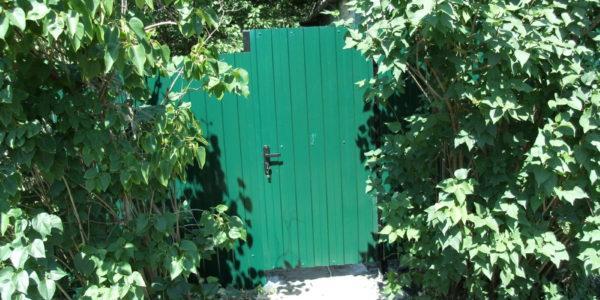Калитка с заборов в селе Девица