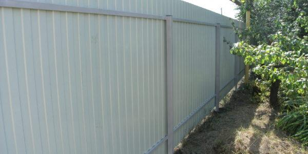 Забор из профнастила ral8017 в Воронеже - 10