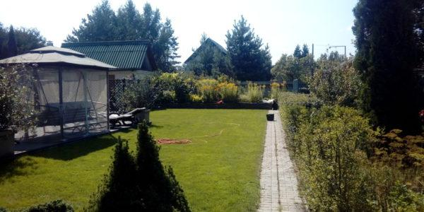 Оформление парка