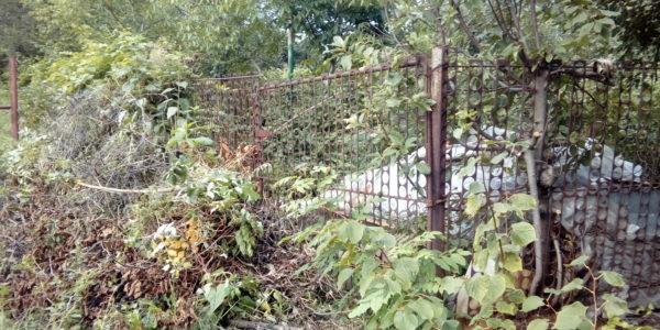 Забор из профнастила в селе Чертовицы - 2