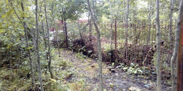 Забор из профнастила в селе Чертовицы - 3