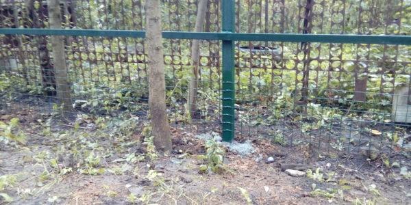 Забор из профнастила в селе Чертовицы - 6