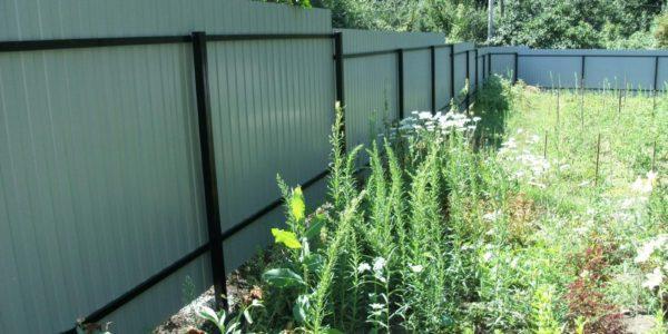 зеленый забор из металлопрофиля в воронеже